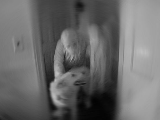 The ghost dog mostly ghostsmostly ghosts for Https pedro camera it
